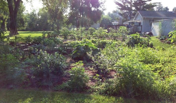 lindsey_garden